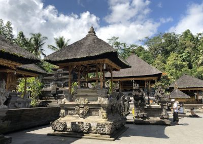 Bali : Ubud – Healing